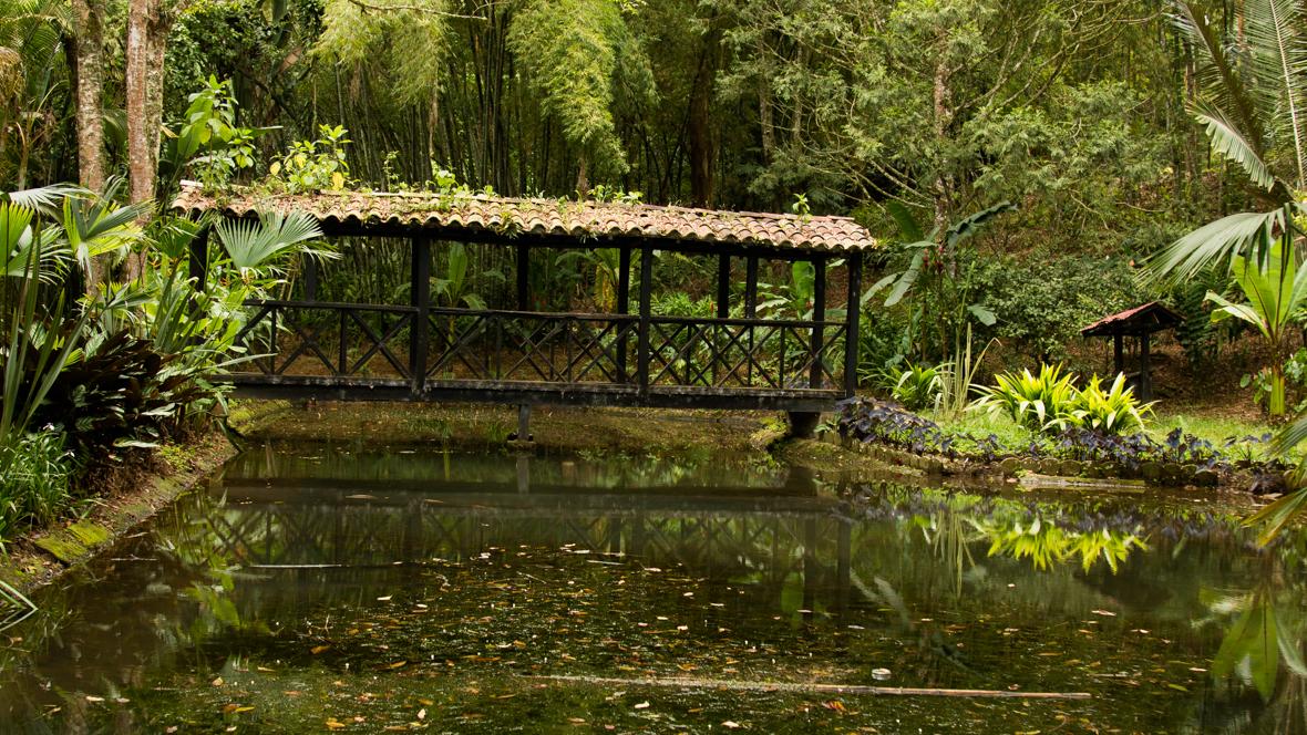 El jardín botánico trabaja en buenas prácticas ambientales